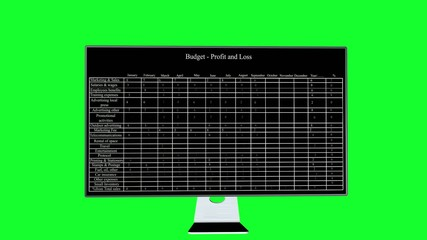 Budget for profit and loss presented on desktop monitor