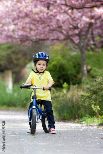 Little boy playing with his bike outdoors in the park Poster