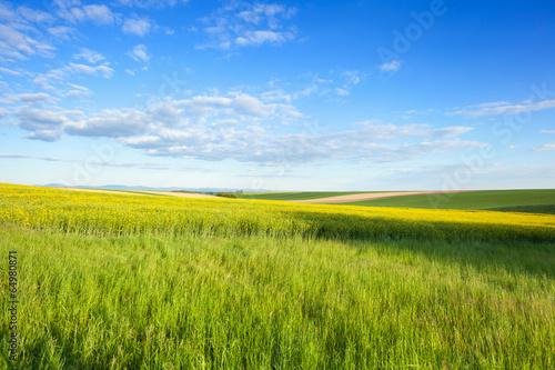 canvas print picture Landwirtschaft