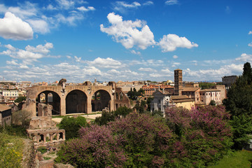 view of Roman Forum, from the Palatine Hill, Rome