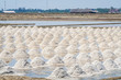 The harvest times of salt in salt evaporation pond in Thailand