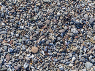 Pebble and gravel