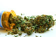 Leinwandbild Motiv Medical Marijuana C
