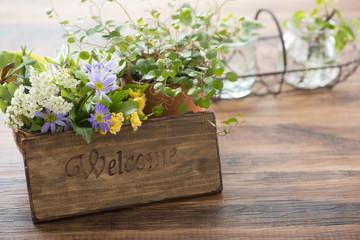 ウェルカム プレート サイン 観葉植物