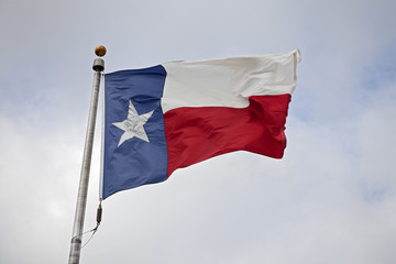 State Flag of Texas Flapping in the Wind