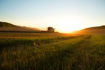 Ernte im Sonnenuntergang