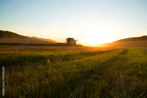 canvas print picture Ernte im Sonnenuntergang