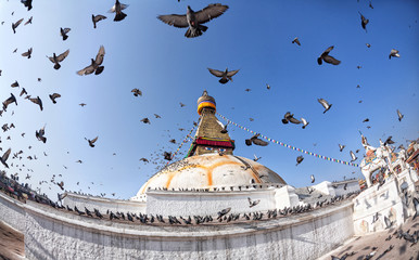 Bodhnath stupa with flying birds