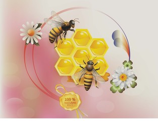 Organik bal ve arılar