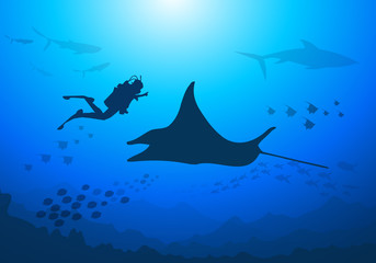 Manta,Diver under the Sea-Vector