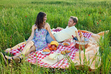 Relaxed young couple enjoying a summer picnic.
