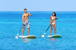 Stand up paddleboard beach people on paddle board - 65001406