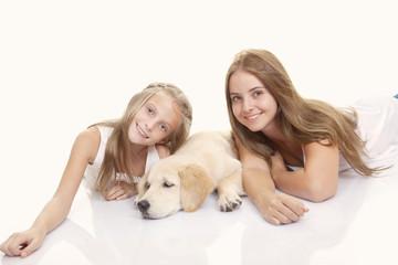 family pet golden labrador
