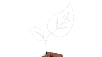 Blatt Blätter grün Öko Symbol ökologisch bio Pflanze Hand Symbol