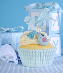 Blue theme baby boy cupcake with cute birds