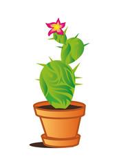bilder und videos suchen kaktusse. Black Bedroom Furniture Sets. Home Design Ideas