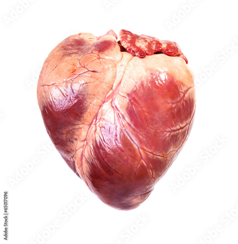 real heart - 65017096