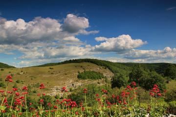 Paysage de Chasteaux (Corrèze)
