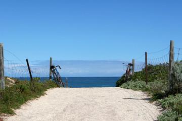 Al mare viale con bici