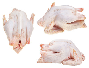 set of raw plucked soup chickens