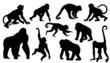 monkey silhouettes - 65021869