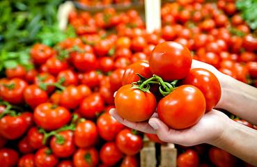 Pomodori freschi al mercato - vita sana