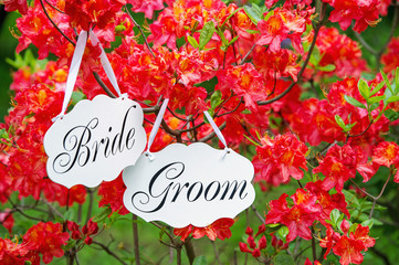 Bride and groom decoration boards hanging on the blooming tree