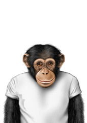smartmonkey isolated