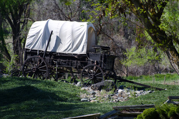 Covered Wagon in the Wilderness