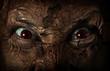 Постер, плакат: demonic ugly face