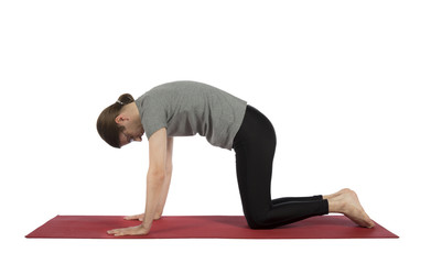 Man doing cat pose in yoga
