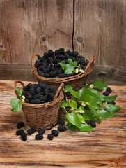 Baskets full black mulberries with leaves