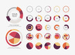 Infographic Elements Pie chart set icon