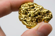 Leinwandbild Motiv One Troy Ounce California Gold Nugget