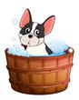A dog taking a bath