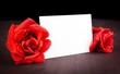 red roses and blank gift card for text on old wood background
