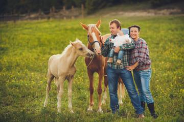 Family feeding horses in a meadow