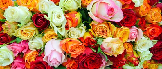 rosen1705a