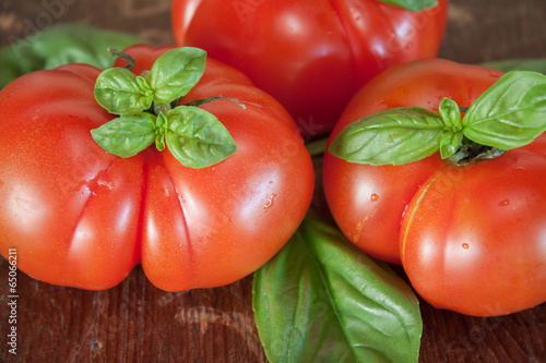 Tomatoes with basil leaves on wooden table closeup