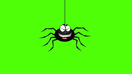 funny spider animation