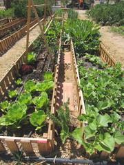 enclosure garden
