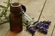 Lavandula Lavanda Lawenda Lavendel Лаванда - 65075672