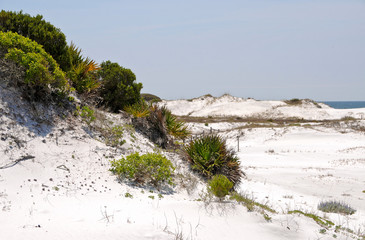 Beautiful Sand Dunes