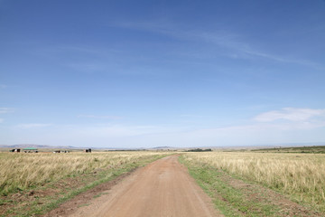 Dirt road and the stretching savannah grassland of  Masai Mara
