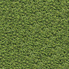 Laurel Bush. Seamless Tileable Texture.