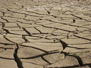 kuraklıktan dolayı çatlama
