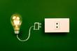 Lightbulb and plug