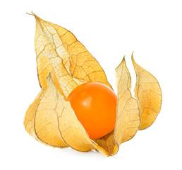 Physalis fruit isolated