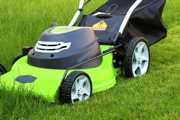 Cutting the grass with lawn mower