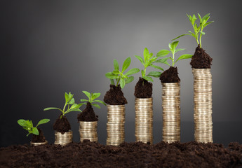 Saplings On Stack Of Coins Representing Growth